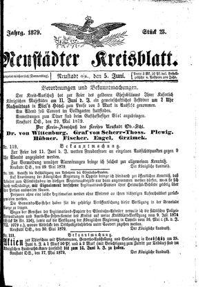 Neustädter Kreisblatt vom 05.06.1879
