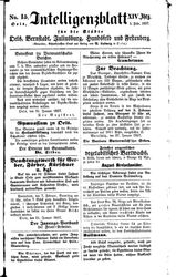 Intelligenzblatt für die Städte Oels, Bernstadt, Juliusburg, Hundsfeld und Festenberg