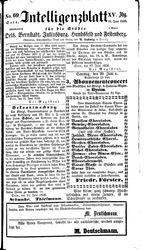 Intelligenzblatt für die Städte Oels, Bernstadt, Juliusburg, Hundsfeld und Festenberg (19.06.1858)