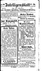 Intelligenzblatt für die Städte Oels, Bernstadt, Juliusburg, Hundsfeld und Festenberg (21.08.1858)