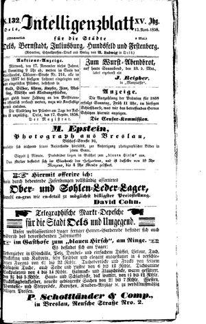 Intelligenzblatt für die Städte Oels, Bernstadt, Juliusburg, Hundsfeld und Festenberg vom 13.11.1858