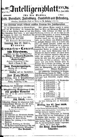 Intelligenzblatt für die Städte Oels, Bernstadt, Juliusburg, Hundsfeld und Festenberg on Jun 11, 1859