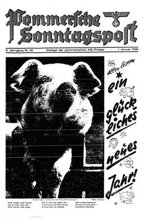 Pommersche Zeitung vom 01.01.1939
