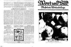 Fehrbelliner Zeitung vom 21.02.1931