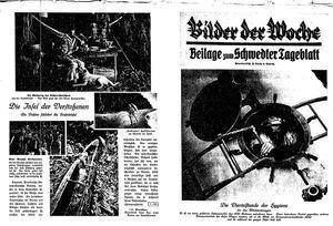 Schwedter Tageblatt vom 24.01.1930