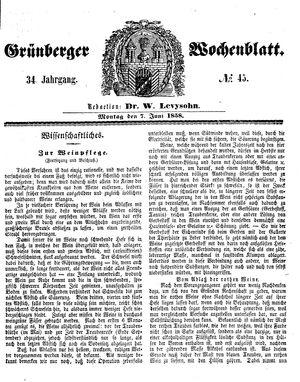 Grünberger Wochenblatt vom 07.06.1858
