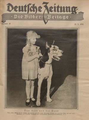 Rheinsberger Zeitung vom 21.02.1931