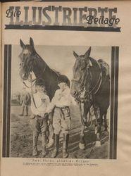 Rheinsberger Zeitung / Illustrierte Beilage (17.10.1931)