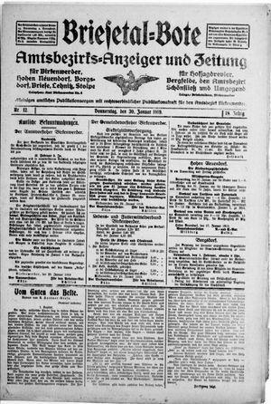 Briesetal-Bote vom 30.01.1919