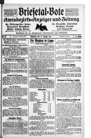 Briesetal-Bote vom 17.01.1933