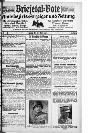 Briesetal-Bote vom 12.03.1933