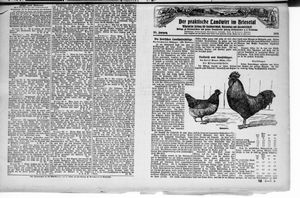 ˜Derœ praktische Landwirt im Briesetal vom 02.03.1926