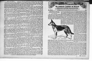 ˜Derœ praktische Landwirt im Briesetal vom 25.03.1926