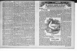 ˜Derœ praktische Landwirt im Briesetal vom 03.04.1926