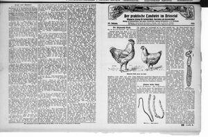 ˜Derœ praktische Landwirt im Briesetal vom 05.06.1926