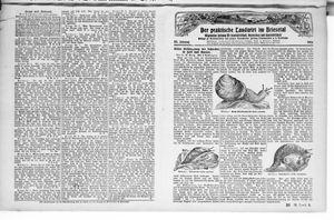 ˜Derœ praktische Landwirt im Briesetal vom 31.07.1926