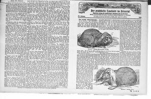 ˜Derœ praktische Landwirt im Briesetal vom 07.08.1926