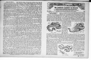˜Derœ praktische Landwirt im Briesetal vom 18.09.1926