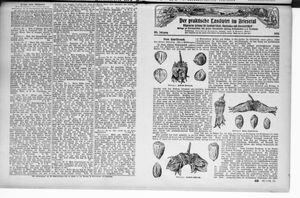˜Derœ praktische Landwirt im Briesetal vom 13.11.1926