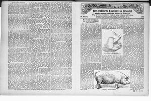 ˜Derœ praktische Landwirt im Briesetal vom 11.12.1926