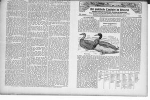 ˜Derœ praktische Landwirt im Briesetal vom 17.02.1927