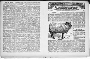 ˜Derœ praktische Landwirt im Briesetal on Nov 24, 1927