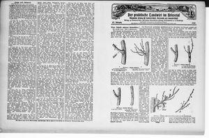 ˜Derœ praktische Landwirt im Briesetal vom 15.03.1928