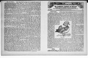 ˜Derœ praktische Landwirt im Briesetal vom 29.03.1928