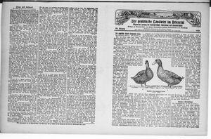 ˜Derœ praktische Landwirt im Briesetal vom 17.01.1929