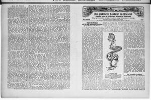 ˜Derœ praktische Landwirt im Briesetal vom 31.01.1929