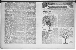 ˜Derœ praktische Landwirt im Briesetal vom 14.02.1929
