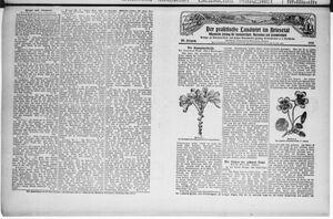 ˜Derœ praktische Landwirt im Briesetal vom 28.02.1929