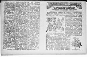 ˜Derœ praktische Landwirt im Briesetal vom 09.05.1929