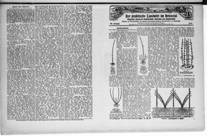 ˜Derœ praktische Landwirt im Briesetal vom 20.06.1929