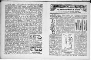 ˜Derœ praktische Landwirt im Briesetal vom 15.08.1929