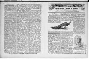 ˜Derœ praktische Landwirt im Briesetal vom 29.08.1929