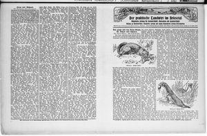 ˜Derœ praktische Landwirt im Briesetal vom 10.10.1929