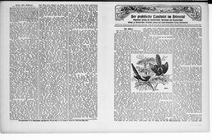 ˜Derœ praktische Landwirt im Briesetal vom 24.10.1929