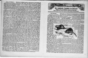 ˜Derœ praktische Landwirt im Briesetal vom 07.08.1930