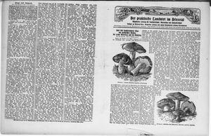 ˜Derœ praktische Landwirt im Briesetal vom 21.08.1930