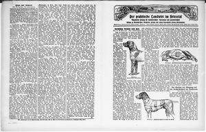 ˜Derœ praktische Landwirt im Briesetal vom 10.01.1931