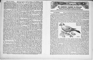 ˜Derœ praktische Landwirt im Briesetal vom 19.02.1931